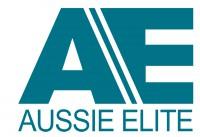 AE logo Teal.jpg